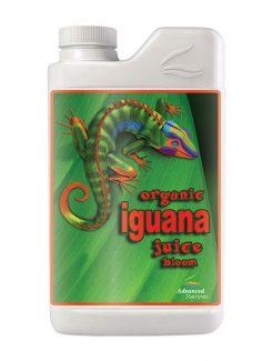 Iguana Organic Juice Bloom 1l