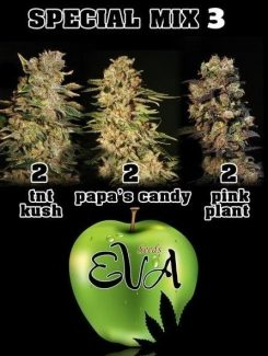 Eva Seeds Special Mix 3 Fem (6 Semillas)