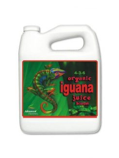 Iguana Organic Juice Bloom 5L.