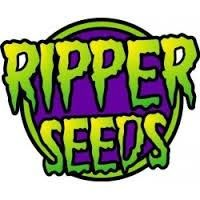 Ripper Seeds Coleccionista 1 6Und Fem