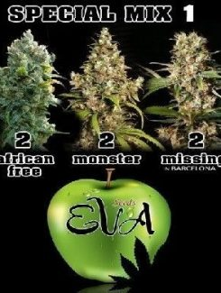 Eva Seeds Special Mix 1 Fem (6 Semillas)