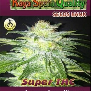 Kaya Spain Quality Super THC Fem (3 Semillas)
