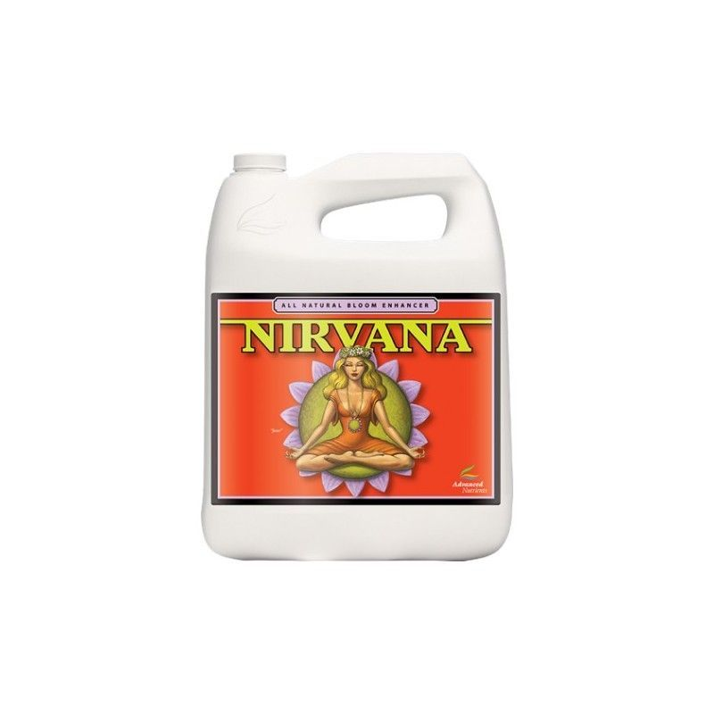 Nirvana 5L.